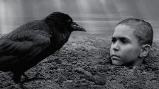 """מתוך """"הציפור הצבועה"""""""