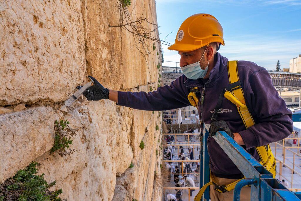 בכותל המערבי בירושלים - דואגים לבריאות הכותל