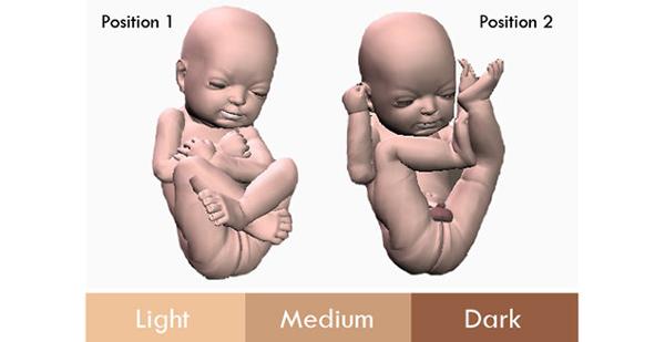בחירה של צבע המודל - עכשיו תוכלו לקבל את התינוק בצבע שלעולם לא יהיה לכם
