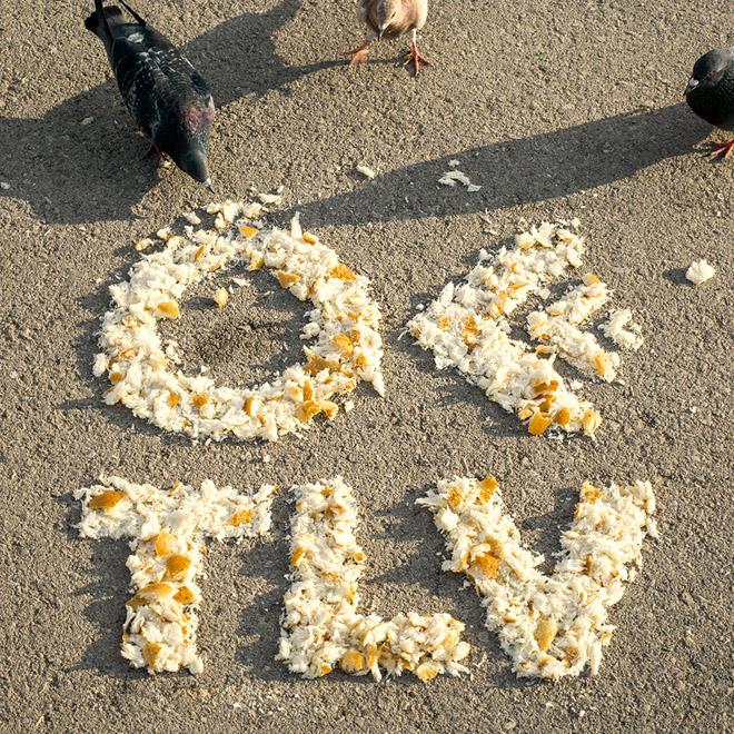 ספוילד באסטרד עם גרסה צילומית ללוגו האכיל שלו לOFFF TLV