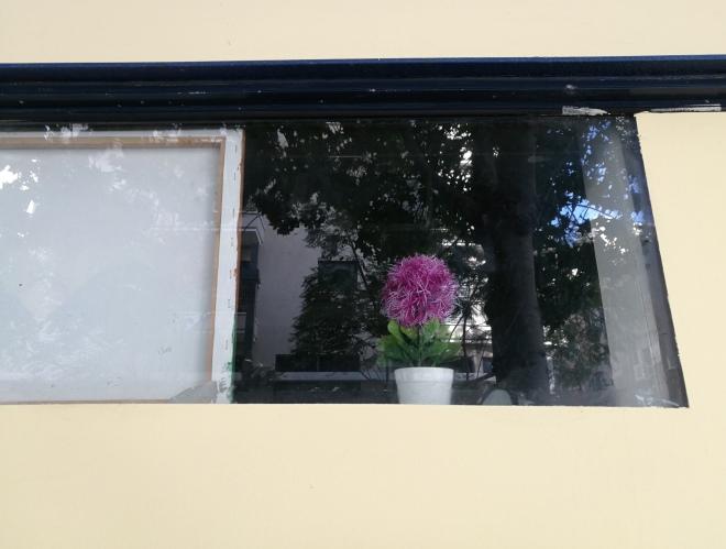 חלון מדומה בוויטרינה הצבועה מחדש בדירה בקומת הקרקע. 14 בינואר 2014