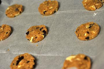 השאירו רווח בין העוגיות כשאתם שמים אותן בתבנית (צילום: טל אברזל)
