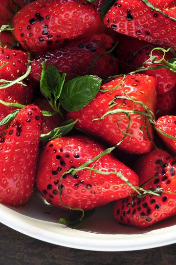 תותים בחומץ בלסמי, נענע ובזיליקום (צילום: דן חיימוביץ')