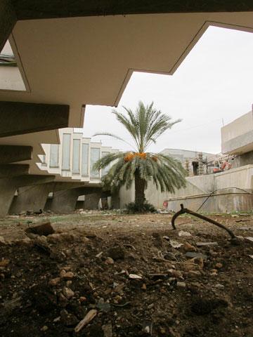 גם הגן אמור לחזור לעצמו (צילום: מיכאל יעקובסון)