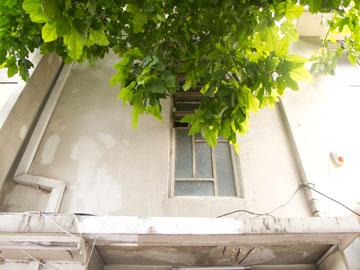 בית פוקס. פרזולים בנוסח מונדריאן (צילום: יהונתן ה. משעל)