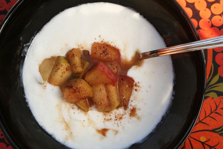 יוגורט מתוצרת בית עם מרקחת תפוחים וקינמון. תנו לחיידקים לעבוד בשבילכם (צילום: ילנה ויינברג)