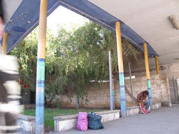 הגינה ומאחוריה הקיר מחופה האבן. הפתרון להזנחה ולעליבות: מישהו צבע את העמודים (צילום: מיכאל יעקובסון)