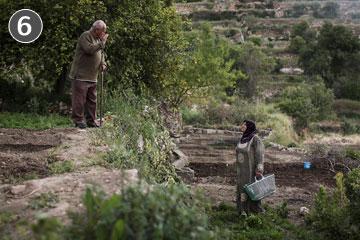 המאבק צלח. זוג פלסטיני בבתיר (צילום: הדס פרוש)