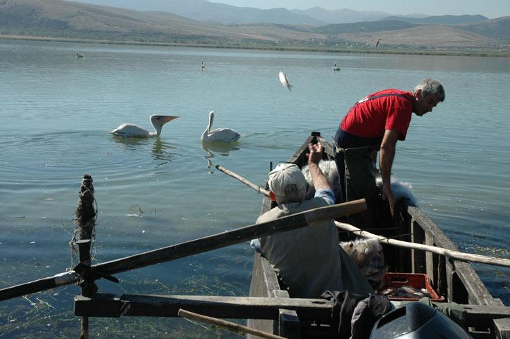 משמש כעתודת מים. אגם פלסטירה (צילום: יזהר גמליאלי)