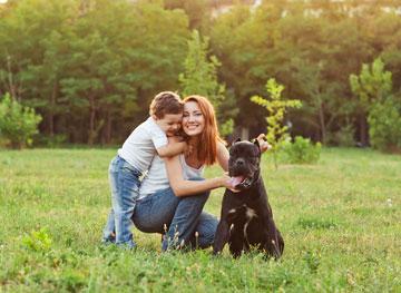הצורך לשמור על הילדים (צילום: shutterstock)