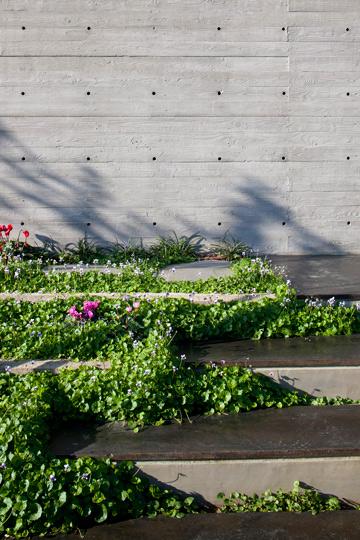 על מדרגות הבטון שמובילות לכניסה הונחה שכבת מתכת מעורבבת בבטון, המונעת שחיקה ומעניקה למדרכים גוון נחושתי (צילום: עמית גרון)
