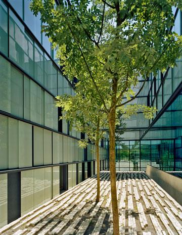 מרכז UNAIDS בז'נווה. מעטפת מבודדת חוסכת אנרגיה (באדיבות Baumschlager Eberle Wien ZT AG)
