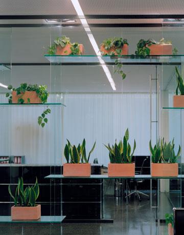 ''זו אדריכלות של ימי חול'' (באדיבות Baumschlager Eberle Wien ZT AG)