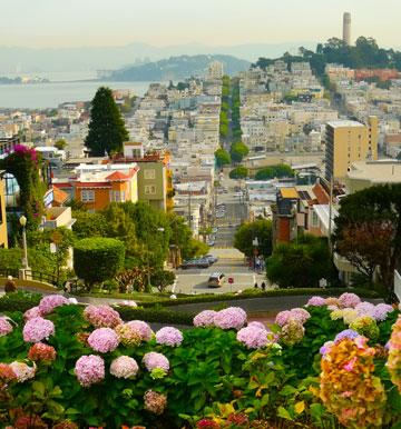 סן פרנסיסקו. זינקה למקום הראשון במחירי הנדל''ן בארה''ב (צילום: shutterstock)