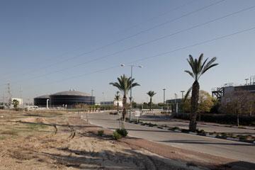 העירייה משקיעה בגינון בדרכים הראשיות (צילום: אביעד בר נס)