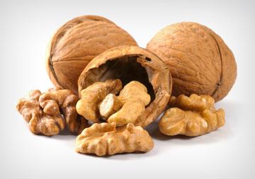 אגוזי מלך. מכילים כמויות גבוהות של חומצות שומן חד בלתי רוויות (צילום: shutterstock)