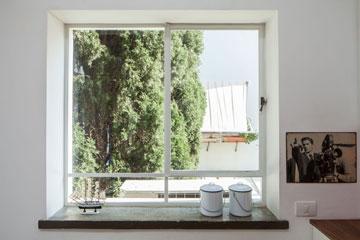 חלון המטבח החדש פונה לעץ ירוק (צילום: טל ניסים)