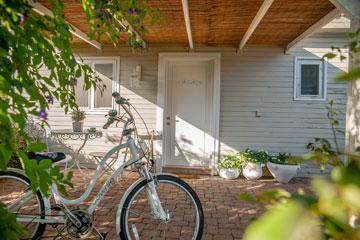 בית העץ שמשמש כמשרד בגינה (צילום: גלעד רדט)