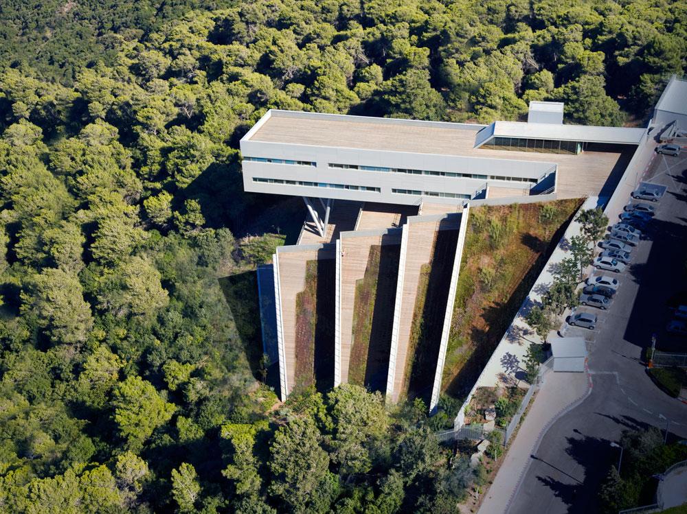 הגג הירוק של בית הסטודנט באוניברסיטת חיפה (חיוטין אדריכלים). האגדה מספרת שכבר בבבל הקדומה גדלו עצים על הגנים התלויים (צילום: עמית גרון)