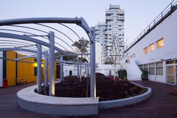 """הגג הירוק של בית החייל בתל אביב. """"לקחנו רחבת מסדרים והפכנו אותה לגן""""  (צילום: טל ניסים)"""