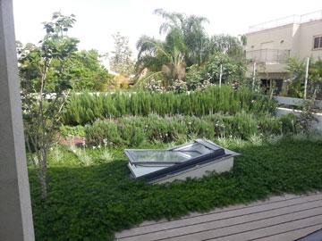 """גג ירוק שתכננה יהודית רוזנבאום. """"יש לנו יתרון בגלל החיבור לחקלאות"""" (צילום: תובל נול, רב-נוי)"""