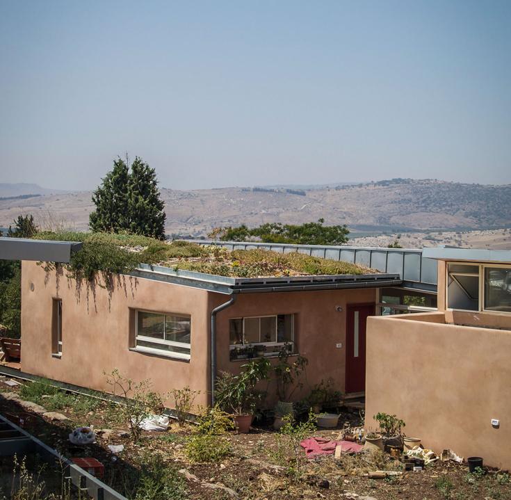 """גג ירוק בבית פרטי בקיבוץ חוקוק. עלות ההקמה - 300 שקל למ""""ר (צילום: איתי סיקולסקי)"""