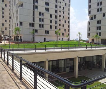 מעונות ברושים באוניברסיטת תל אביב (קייזר-קייזר-לקנר וברוידא מעוז אדריכלות נוף) (באדיבות גנרון יבוא וביצוע תשתיות וגגות ירוקים)