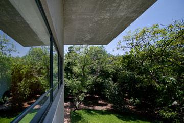 הנוף בקומה השנייה (צילום: עמית גושר)