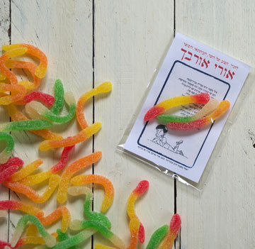 לשימוש בבית הכנסת: שיר וסוכריות שייזרקו לזכר אורבך (צילום: אפרת מוסקוביץ)