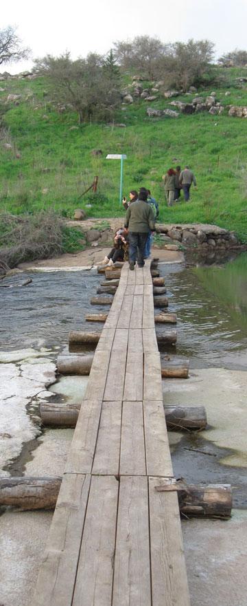 גשר מעל מים סוערים. שמורת שניר (צילום: אריאלה אפללו)