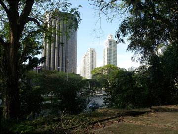 מגדלים אל מול שטחים פתוחים. סינגפור (צילום: Brent Ryan)