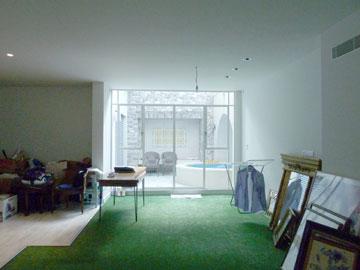 הסלון ''לפני''. שטיח בגוון דשא (צילום: שני רינג)
