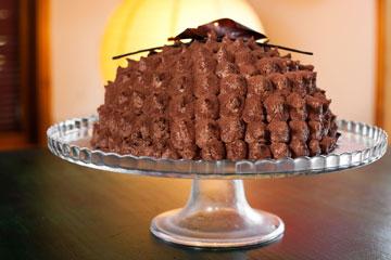 עוגת קיפוד שוקולד, קוקוס ואגוזים שאפתה לירז דרור (צילום: ענבל מרמרי)