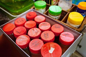 תבלינים בקופסה לשליפה מהירה (צילום: ענבל מרמרי )