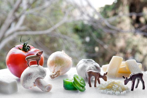 עגבניות, בצל, פטריות, שום, צ'ילי, איילים, חזיר, שכחנו משהו? (צילום: יובל אצילי)