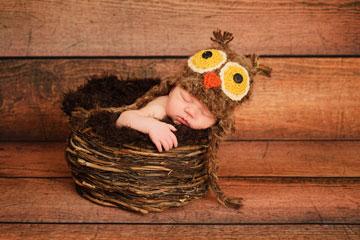 נא לא להעיר את הינשוף (צילום: shutterstock)