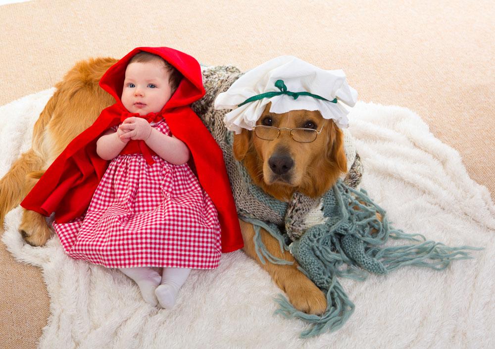 סבתא, למה יש לך אוזניים גדולות כל כך? כיפה אדומה בגרסה הקטנה (צילום: shutterstock)