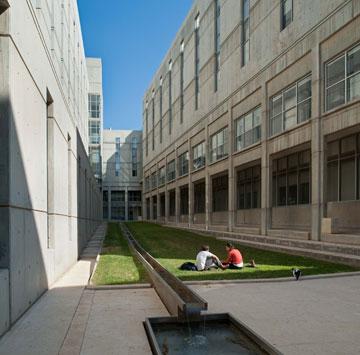 הדשא נלחם על חייו מול הבטון המשתלט (צילום: עמרי אמסלם )