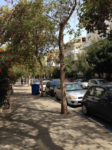 רחוב שלמה המלך בתל אביב (צילום: גריג דוידוביץ)