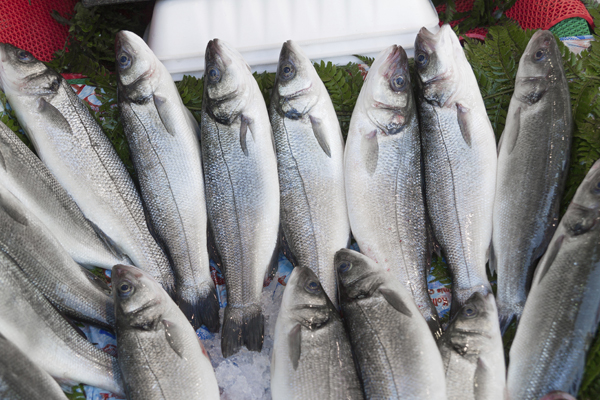 עור מבריק ועיניים צלולות הם סימנים לדג טרי (צילום: thinkstock)