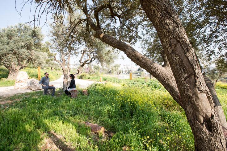 התושבים וארגוני הסביבה הצילו את השטח הפתוח, ותושבי הבירה ומבקריה יכולים ליהנות מהתוצאה (צילום: דור נבו )