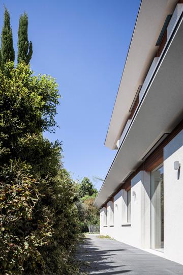 פסי עץ בין הקירות לגגות (צילום: עמית גרון)