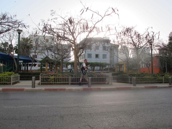 גן החשמל. השיפוץ שלו, שהפך מתחם מפוקפק לגינה סימפטית, שינה את פני השכונה והטביע את חותמו במחירי הדיור הנוסקים (צילום: איתי כ''ץ)