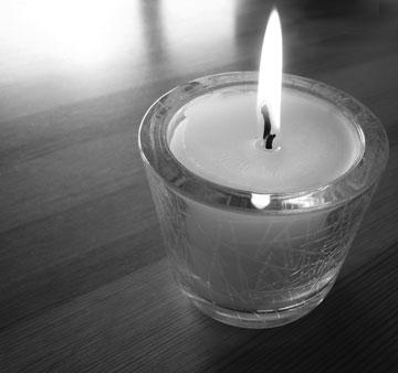 מוות וכאב הם חלק טבעי ובלתי נפרד מהחיים (צילום: rosmary, cc)