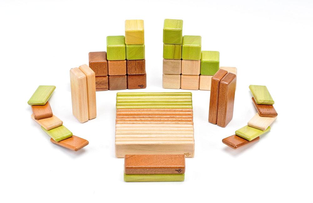 יורדים אל השטיח: ''tegutoys'' יושבת בהונדורס והיא מציעה מוצר אחד בלבד, הברקה לפעוטות: מעצביה הכניסו מגנטים לקוביות עץ בצבעים טבעיים. כך יכולים הקטנים להתנסות בבניית מגדלים, רכבות ושאר מבנים וחיות - עם קצת פחות תסכול מההתמוטטות התכופה של היצירה. המגנטים מסייעים לקוביות להישאר במקומן, ולפעוטות לפתח את החזון היצירתי שלהם (צילום: Tegu)