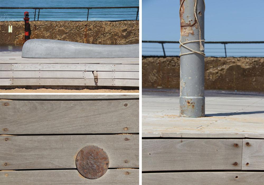 מה קורה כאשר לא מטפלים בדק-עץ כמו שצריך. נמל תל אביב בקיץ שעבר (צילום: אור אלכסנדרוביץ')