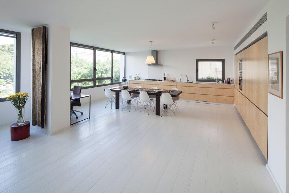 הרצפה חופתה פרקט לבן, שיחד עם הקירות יוצר רקע בהיר לרהיטים. ארונות המטבח עשויים עץ ליבנה לבוד. צבע מוסיף אוסף של שטיחים אפריקאיים (צילום: אביעד בר נס)