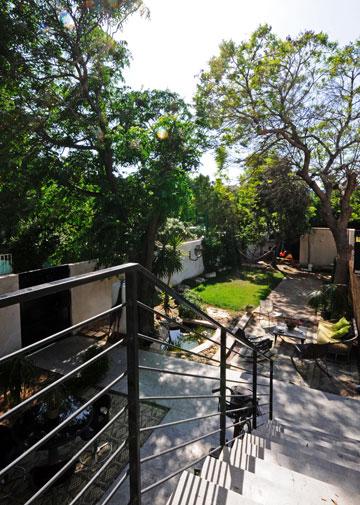 המדרגות המובילות לכניסה לבית (ומבט לגינה) (צילום: נעמה כנפו)
