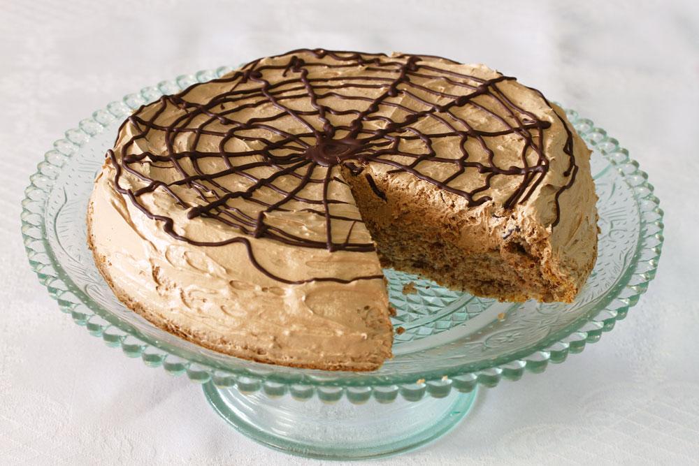עוגת אגוזים כשרה לפסח בציפוי שוקולד (צילום: אסנת לסטר)