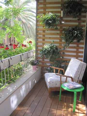 המרפסת החדשה, עם סרגל עץ לעציצי קיסוס ( צילום: ארז ברוכי)